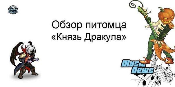 phNr8jK5yWk